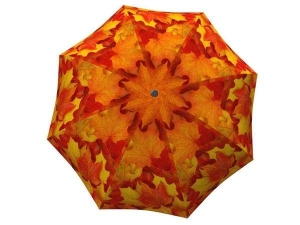 Designer Rain Umbrella with gift box Canadian Autumn