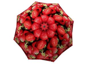 Designer Rain Umbrella with gift box Strawberries