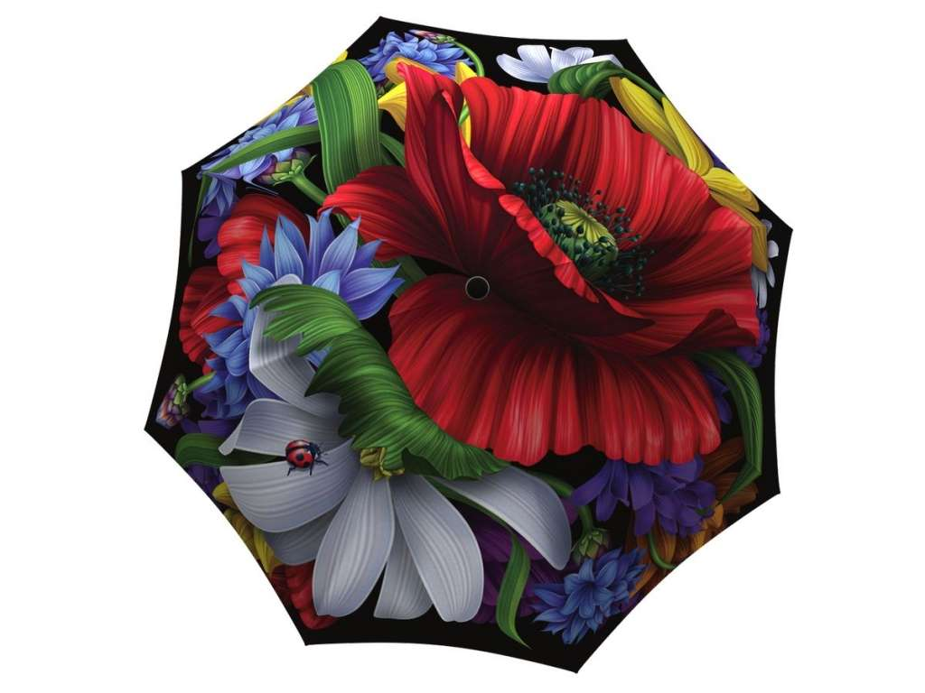 Designer umbrella with gift box - Wild Poppies