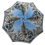 Designer umbrella with gift box Winter