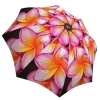 Rain umbrella with gift box - Magnolias