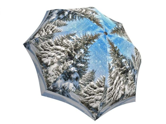 Rain umbrella with gift box - Winter