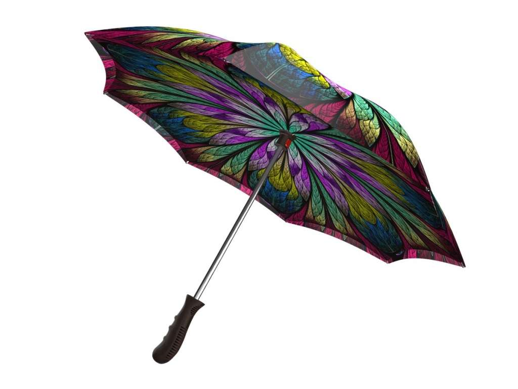 Upside down umbrella - Dragonfly