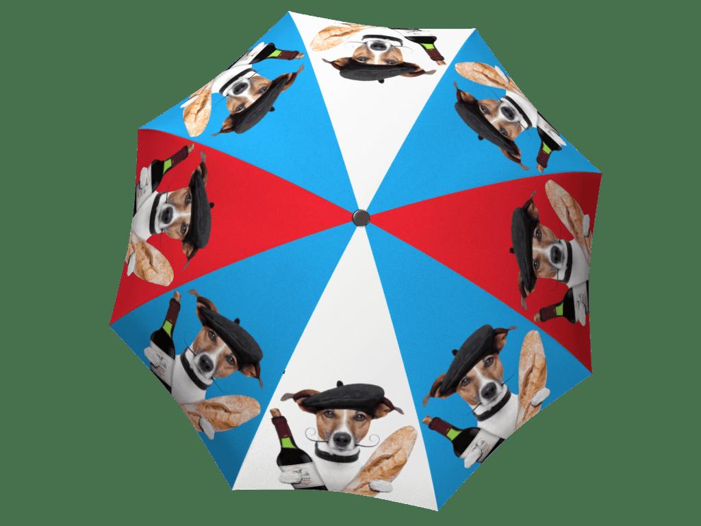 Umbrella with gift box French Dog