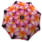 Designer umbrella with gift box Magnolias