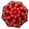 Designer umbrella with gift box Strawberries