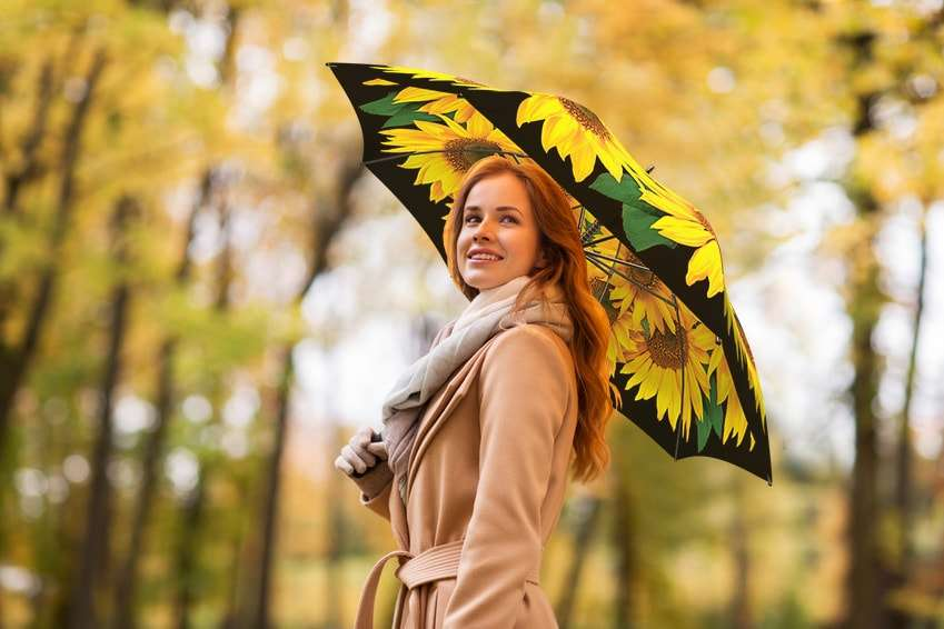 Sunflowers gift umbrella from La Bella Umbrella