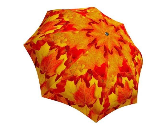 Rain umbrella with gift box - Canadian Autumn