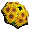 Rain umbrella with gift box - Sunflower