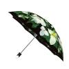 Good quality folding rain umbrella with gift box Trillium