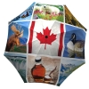 Designer umbrella with gift box - Canadian Collage