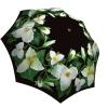 Rain umbrella with gift box - Trillium